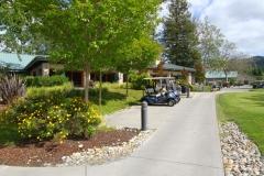 3 Golf Carts